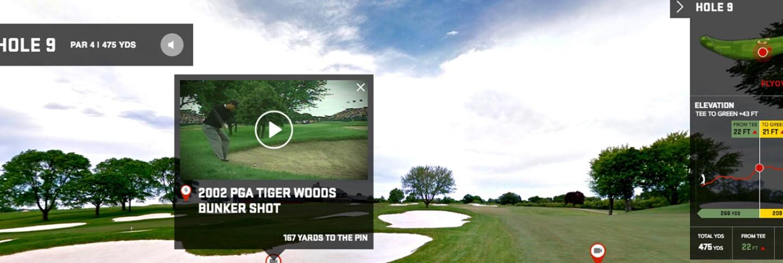 Tiger1440.jpg